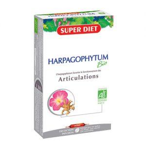 Ekstrakt đavolje kandže (harpagophytum bio)